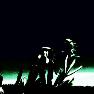 stranger-leaves-_-mpeterson